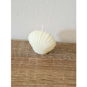 Small Shell Candle