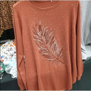 Pink Top with Sparkly Feather