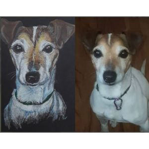 Dog portrait from your photo. Pet portrait, dog art, gift for pet lovers. Coloured pencil on pastel paper.
