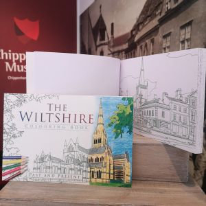 The Wiltshire Colouring Book: Past & Present (Paperback)