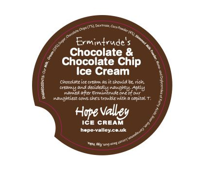 Ermintrude's Chocolate and Choc Chip Ice Cream 500ml