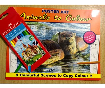 Animals To Colour Colouring Book Pack