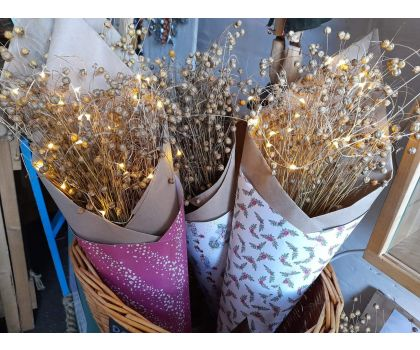 Flax - Dried Flowers per packet